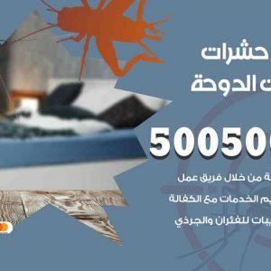 مكافحة حشرات شاليهات الدوحة