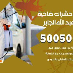 مكافحة حشرات ضاحية مبارك العبدالله الجابر