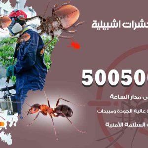 مكافحة حشرات اشبيلية