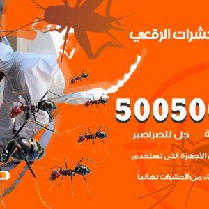 مكافحة حشرات الرقعي