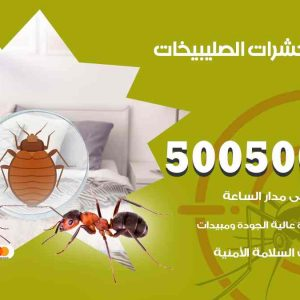 مكافحة حشرات الصليبيخات