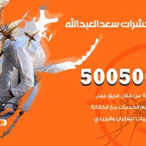 مكافحة حشرات سعد العبدالله