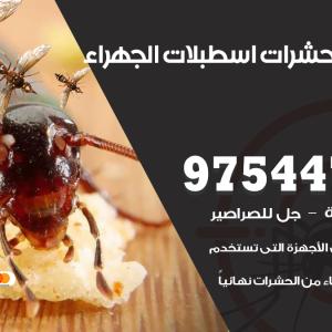 رقم مكافحة حشرات وقوارض اسطبلات الجهراء