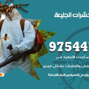 رقم مكافحة حشرات وقوارض الجليعة