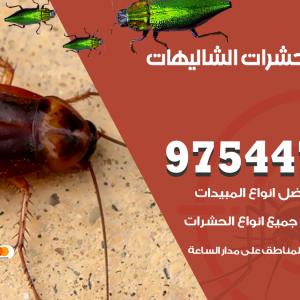 رقم مكافحة حشرات وقوارض الشاليهات
