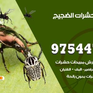 رقم مكافحة حشرات وقوارض الضجيج