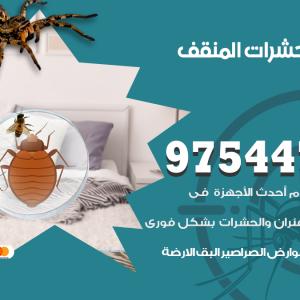 رقم مكافحة حشرات وقوارض المنقف