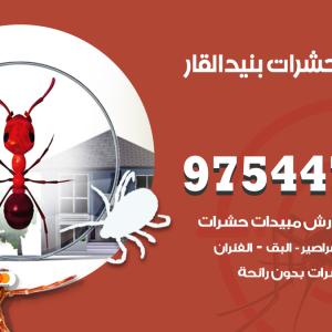 رقم مكافحة حشرات وقوارض بنيد القار