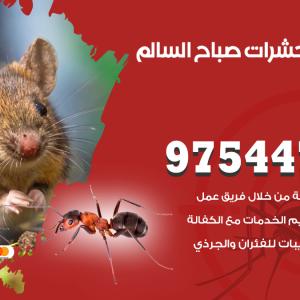 رقم مكافحة حشرات وقوارض صباح السالم