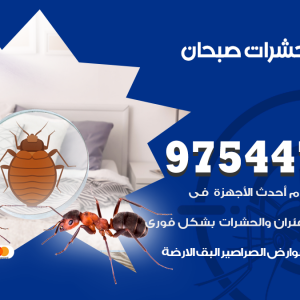 رقم مكافحة حشرات وقوارض صبحان