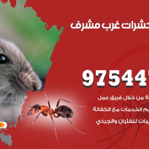 رقم مكافحة حشرات وقوارض غرب مشرف