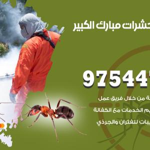 رقم مكافحة حشرات وقوارض مبارك الكبير