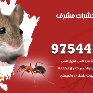 رقم مكافحة حشرات وقوارض مشرف