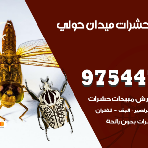 رقم مكافحة حشرات وقوارض ميدان حولي