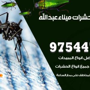 رقم مكافحة حشرات وقوارض ميناء عبدالله